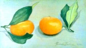 Two Kumquats
