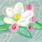 Single blossom