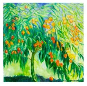 a Peach Tree