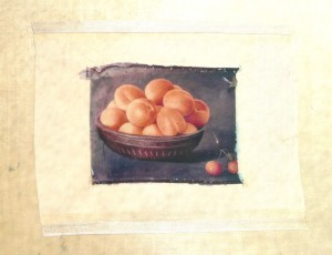collage silk apricots